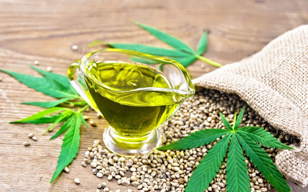 """Hemp """"The green gold that regenerates and has rejuvenating effects"""""""